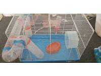 Hamster+ cage