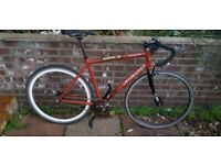 Specialized Langster Singlespeed 2 Speed Kick Back/ Fixie Road Bike-Skull Edition-58cm Frame