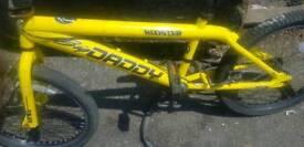 Big daddy BMX bike