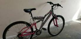 Ladies Mountain Bike in Pink