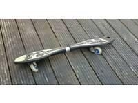 2 wheeled skate board