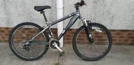 Teenagers mountain bike