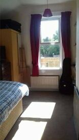 Friendly, Professional House Share in Bath