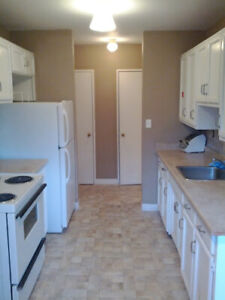 Furnished Room for Rent Near Queens & DT