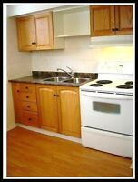 """You'll want to say """"YES! YES"""" BRIGHT 1 bdrm Reno'd Legal Lower"""