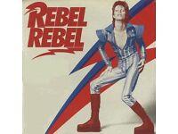David Bowie tour London (Brixton and Beckenham)