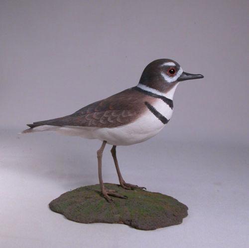 Killdeer Orig Backyard Bird Carvings Water Bird/Birdhug