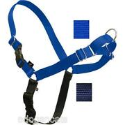 Blue Dog Leash