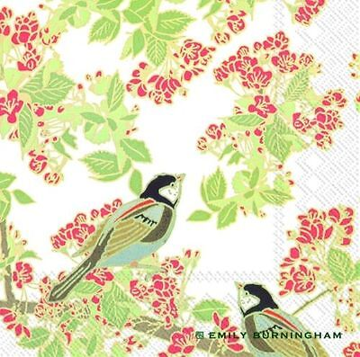 Emily Burningham Bird In Blossom Paper Lunch Napkins NEW