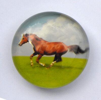 Magnet aus Glas Motiv Pferd neu