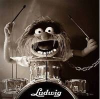 Beginners Drum lessons available