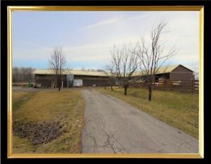Spacious shed/Barn and 1 Acre land for Rent