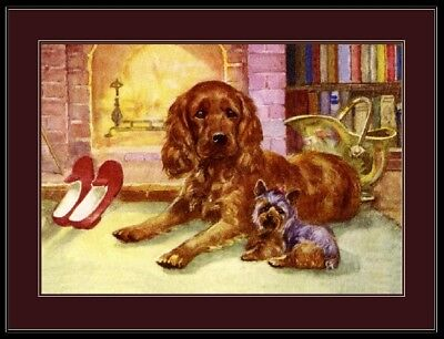 English Print Picture Cocker Spaniel Yorkshire Terrier Dog Vintage Poster Art ()