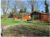 Self Catering Lodge (3 adults ) Sussex - Easter Three Night Break - 14th - 17th April 2017 - £399