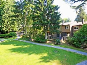 Gorgeous! Luxury 2 Bedroom Townhome in Upper Lonsdale North Shore Greater Vancouver Area image 5