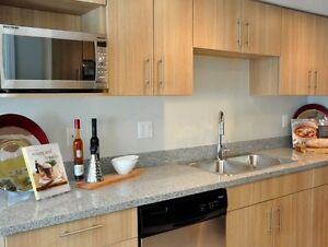 Gorgeous! Luxury 2 Bedroom Townhome in Upper Lonsdale North Shore Greater Vancouver Area image 8