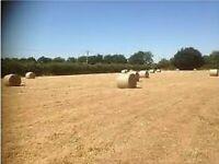 Hay bales
