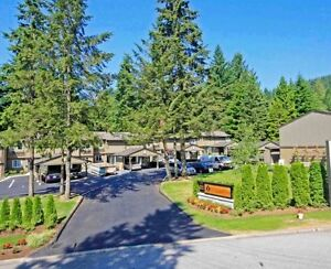 Gorgeous! Luxury 3 Bedroom Townhome in Upper Lonsdale North Shore Greater Vancouver Area image 2