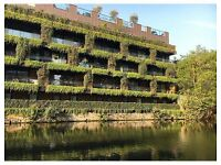 Room Available in our Canal Side Apartment in Haggerston