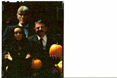 ADDAMS FAMILY HALLOWEEN TV SHOW ORIG VINTAGE COLOR 4X5 TRANSPARENCY STILL PHOTO](Family Halloween Shows)