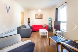 Large Double en suite rooom in spacious well finished flat
