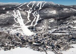 Lift tickets, ski passes  for Blue Mountain and Tremblant