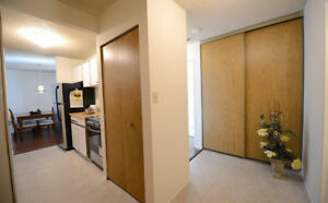 $1550 / 1br - 737 sqft - On the 16th Floor - Nov 1st