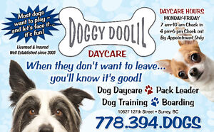 Surrey Central's only Dog daycare is Doggy Doolil Daycare