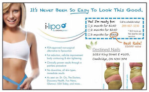 i-Lipo (laser fat reduction) LOOSE INCHES INSTANTLY Cambridge Kitchener Area image 2
