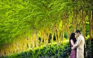 Best London Indian Wedding Photographers  | Hindu | Sikh | London Ontario image 9