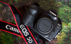 Canon 5D Mark II (Mint Condition w/ Memory Cards + Camera Bag)
