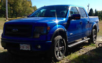 2014 Ford FX4