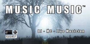 Music Music™ DJ, MC & Live Music Service! London Ontario image 1