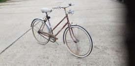 Raleigh woman bike
