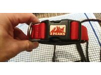 3 peaks dog collar and 2 leads