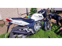 (Price Reduced) Sinnis Stealth 125cc