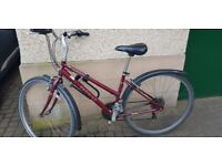 Ladies Hybrid Bicycle 17'' Frame