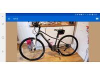 Trek Neko SLX 2016 Womans Bike