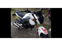 Honda msx 125 for sale lots of extras.