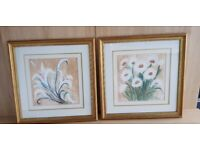 2 lovely matching watercolour paintings by Sandra Cooper
