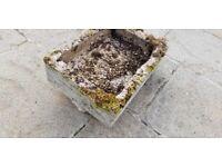concrete garden planter.