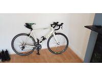 Carrera Vanquish Road Bike - White - 54CM Frame