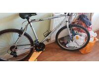 Mens rocker rider mkuntain bike silver 26in wheel