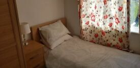 Furnished Room for student/professional in filton