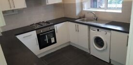 CAMBERWELL/ELEPHANT & CASTLE Brand New 2 Double Bedroom Flat, 5 mins walk Denmark Hill station