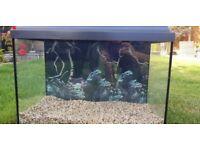 JUWEL 80L Primo line fish tank LED lights.