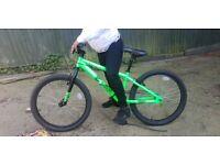X-Rated BMX bike 24inch wheel