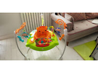 Fisher Price Roarin' Rainforest Jumperoo - Hardly-ever-used
