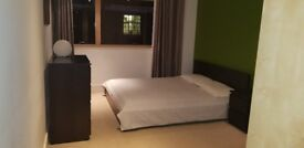 En-Suite Fantastic Furnished Double Spacious Room