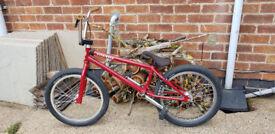 Fit Pledge BMX Bike